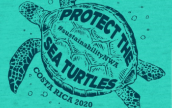 Manage campaigns costaricaturtle