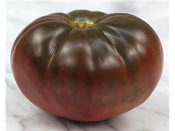 Normal tomato true black brandywine img 5768