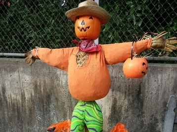Normal small scarecrow