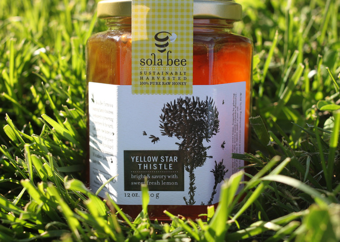Details yellow star thistle honey