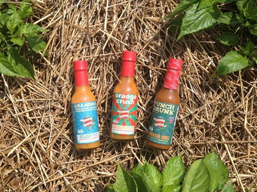 Hot Sauce 3Pack