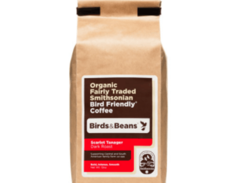 Scarlet Tanager French Roast - 12oz