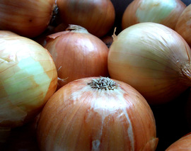 Card image onions1