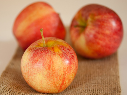 Half-peck of Gala apples
