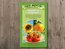 Small summer of sunflowers gift box