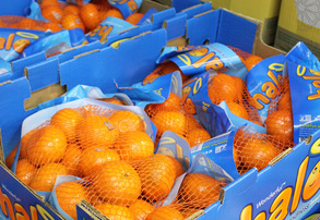 Display clementines