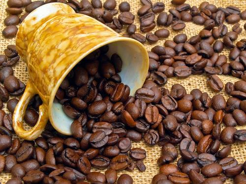 Tony S Coffee Cafe Carmelita