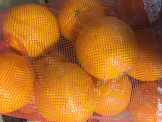 Small oranges  4 lb. bag
