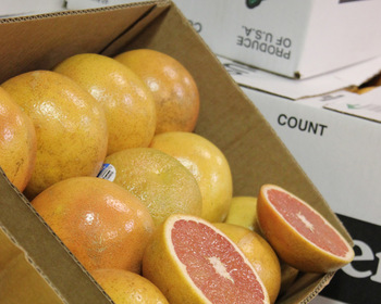 Market card grapefruits  5 lb. bag