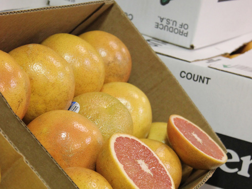 Grapefruits (5 lb. bag)